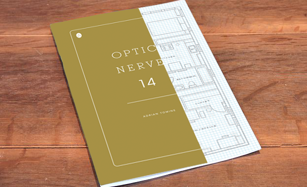 opticnerve14